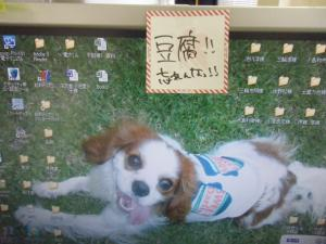 DSCF2049_convert_20110129154231.jpg