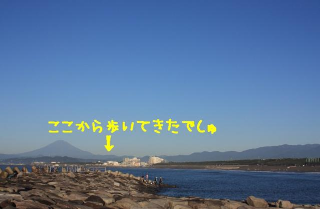 IMG_2881_R-2.jpg