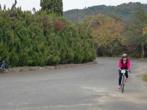 高坂自然休暇村
