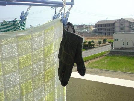グローブ洗濯 (3)