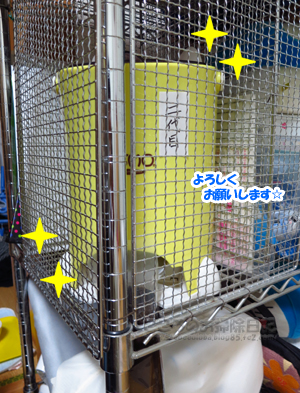 LUSMO003-12-2012.jpg
