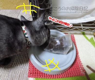 LUSMOribu007-11-2012.jpg