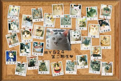 MYG2012-1.jpg