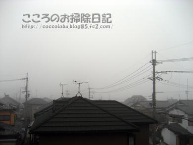 asakeshikki-2011.jpg