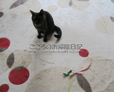 asoberibu-2011.jpg