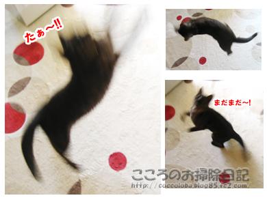 asoburibu-2011.jpg