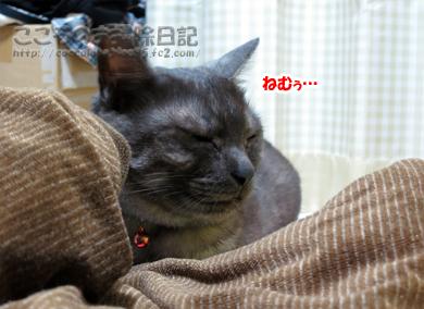 asoburibu002-2012.jpg