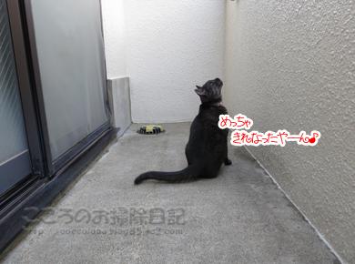 berandaribu2-2012_20120326191448.jpg