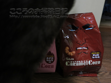 caramelcorn002-2012.jpg
