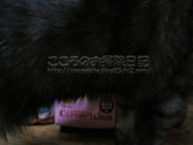 caramelcornribu-2012.jpg