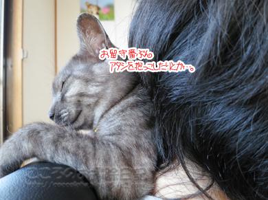dakkoribu001-09-2012.jpg
