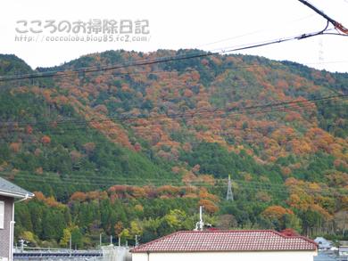fukei006-11-2012.jpg