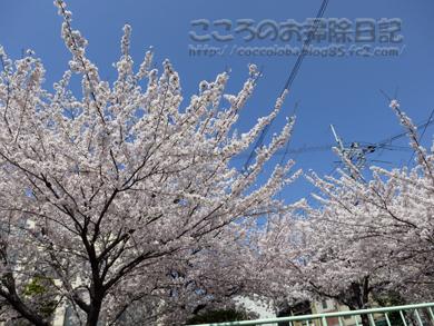 fukei1-2012_20120413165631.jpg