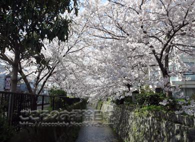 fukei3-2012_20120413165435.jpg
