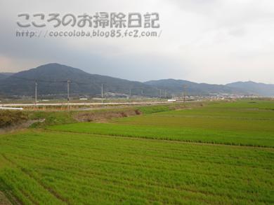 fukei5-2012_20120410001348.jpg