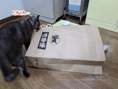 fukuroribu007-11-2012.jpg