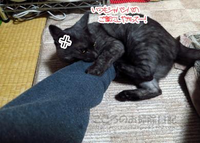 gaburiribu001-11-2012.jpg