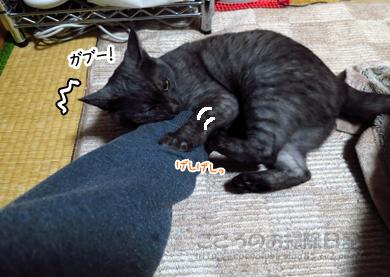 gaburiribu002-11-2012.jpg