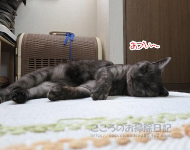 genkanribu001-07-2012.jpg