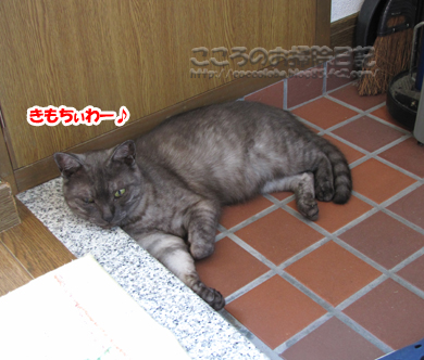 genkanribu001-08-2012.jpg