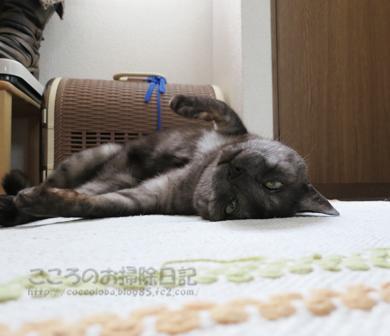 genkanribu002-07-2012.jpg