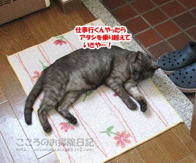genkanribu002-08-2012.jpg