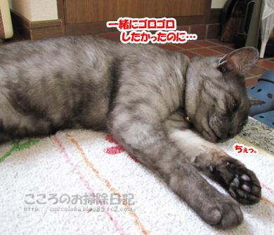 genkanribu003-08-2012.jpg