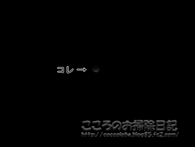 gesshoku1-2011.jpg