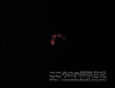 gesshoku2-2011.jpg