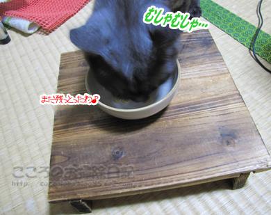 gohanribu001-08-2012.jpg
