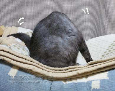 hanmokkuribu007-10-2012.jpg