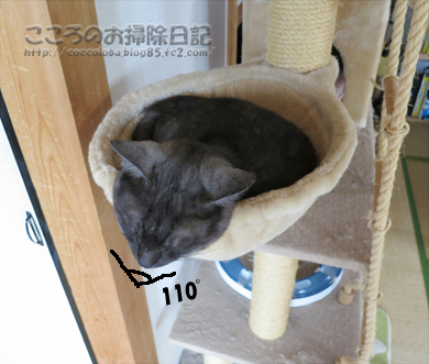 hanmokkuribu012-07-2012.jpg