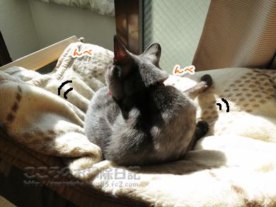 hanmokkuribu016-10-2012.jpg