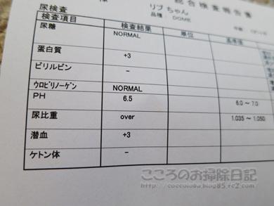 kensaribu001-10-2012.jpg