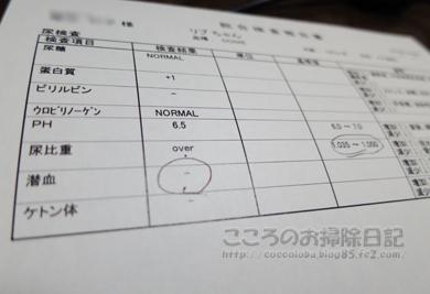 kensaribu001-11-2012.jpg