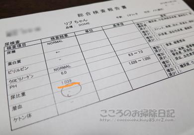 kensaribu001-12-2012.jpg