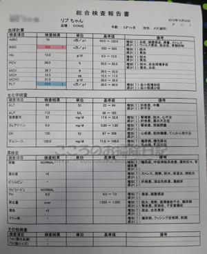 ketsuekikensa002-10-2012.jpg