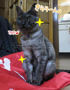 kireiribu001-10-2012.jpg
