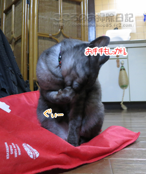 kireiribu003-10-2012.jpg