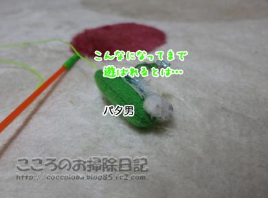 konnanipata-201.jpg