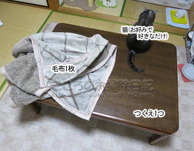 kotatsuribu006-2012.jpg
