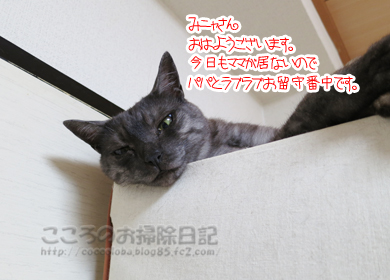 kurozettoribu001-09-2012.jpg