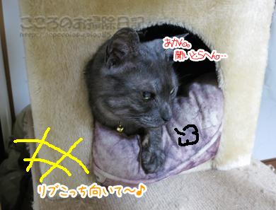 kyakushitsuribu008-08-2012.jpg