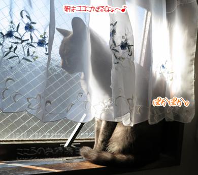 madoribu001-10-2012.jpg