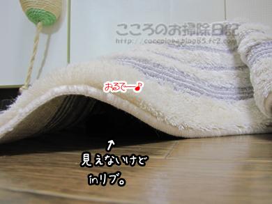 mattoshitaribu001-08-2012.jpg