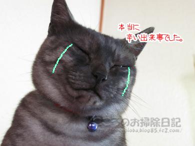 nakiribu001-09-2012.jpg