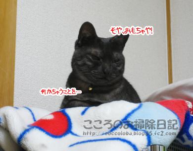 nanikaribu-2011.jpg