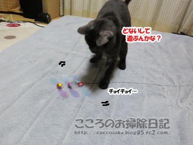 omotyatoribu3-2011.jpg