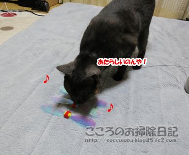 omotyatoribu4-2011.jpg