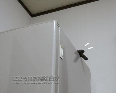 reizoukoribu005-2012.jpg